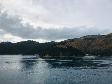 Premiers fjords de l'ïle Sud - Région de Picton - Nouvelle-Zélande
