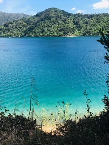 Fjord et eau cristalline - Picton - Nouvelle-Zélande