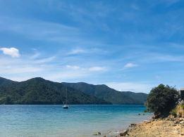 """Vue sur la route """"Queen Charlotte Scenic Road"""" - Région de Marborough - Nouvelle-Zélande"""
