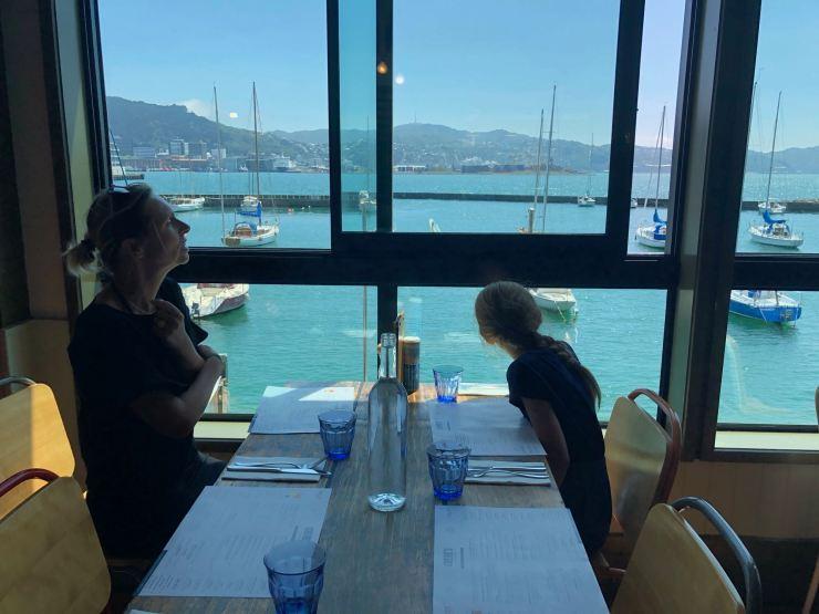 En attendant Tim, vue sur la Marina - Wellington - Nouvelle-Zélande