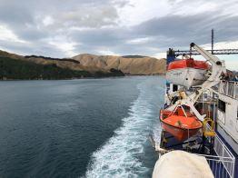 Premiers fjords de la région de Picton - Ile Sud - Nouvelle-Zélande