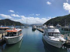 Port de plaisance de Picton - Nouvelle-Zélande