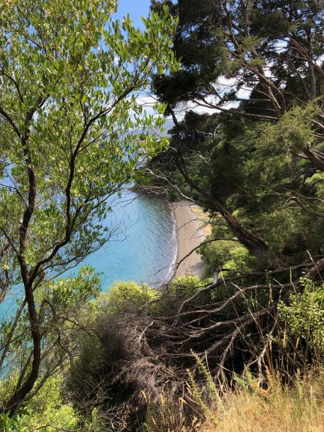 Petite plage cachée depuis notre balade vers Bob's Bay - Picton - Nouvelle-Zélande