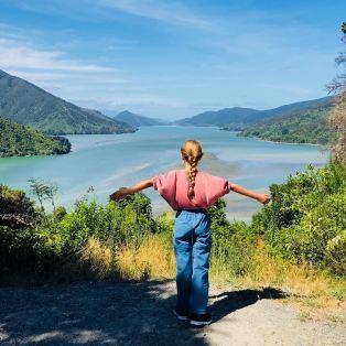 """Vue sur la route """"Queen Charlotte Scenic Road"""" - Région de Marlborough - Nouvelle-Zélande"""