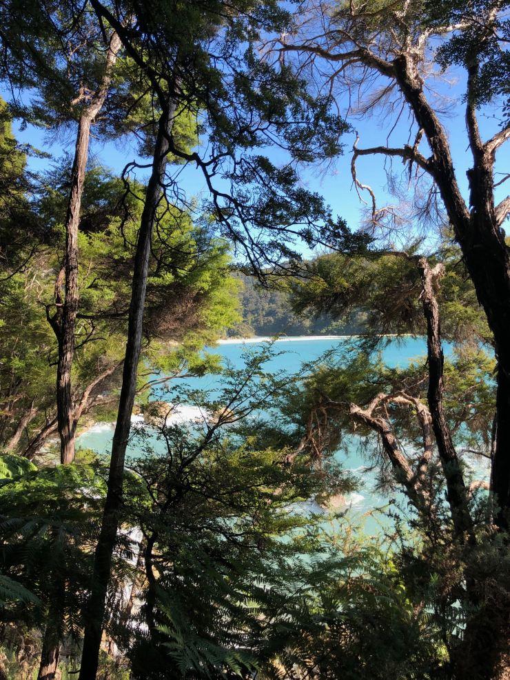 Magnifiques Paysages du parc Abel Tasman - Nouvelle-Zélande