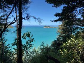 Vue sur la mer turquoise à travers la végétation - Parc Abel Tasman - Nouvelle-Zélande