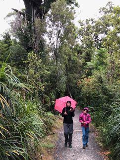Truman Track - Punakaiki - Nouvelle-Zélande