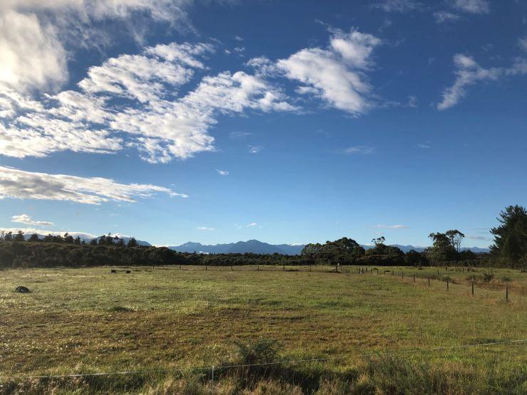 Vue de notre van au petit matin - West Coast - Nouvelle Zélande