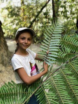 Eden montre la feuille de fougère, symbole de la Nouvelle-Zélande - Parc Abel Tasman - Nouvelle-Zélande
