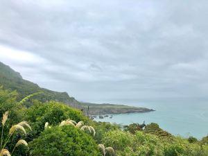 Paysage de la West Coast - Nouvelle-Zélande