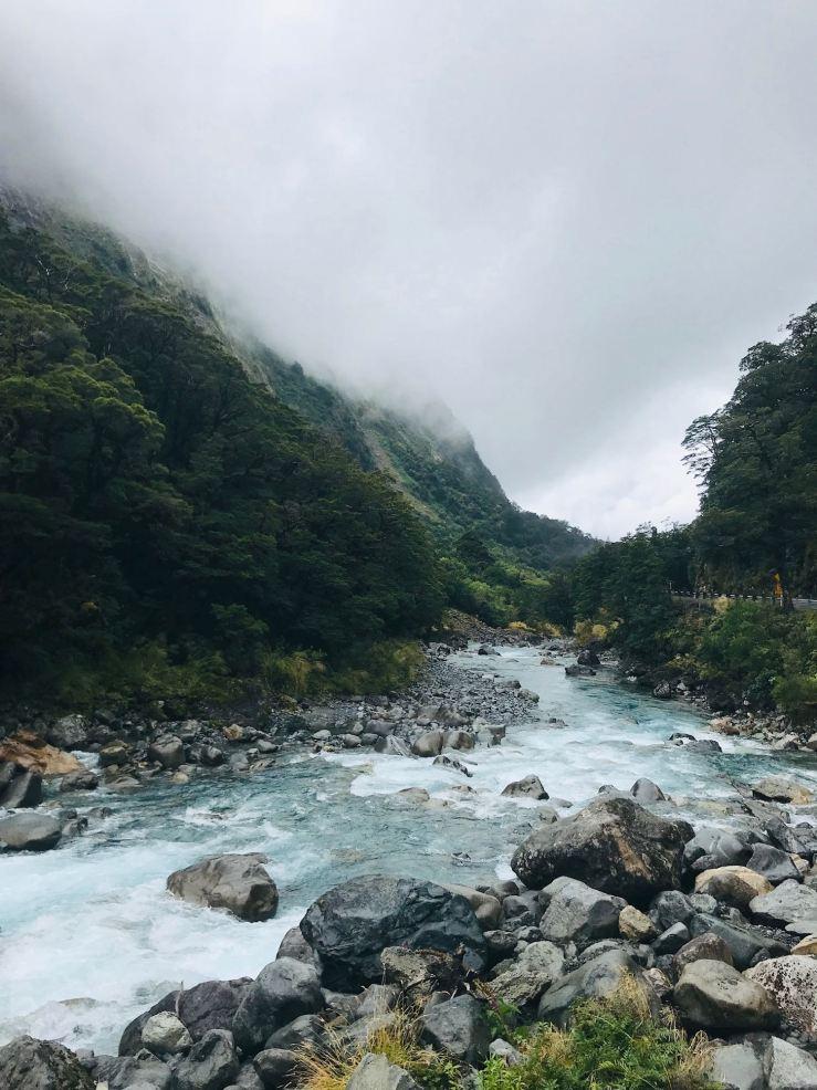 Sur la route vers le Milford Sound - Fjordland - Nouvelle-Zélande