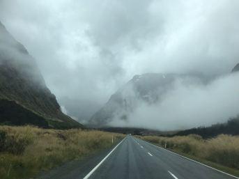 Sur la route du Milford Sound - Fjordland - Nouvelle-Zélande