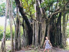 Eden pose sous le banian - Jardin d'eau - Tahiti