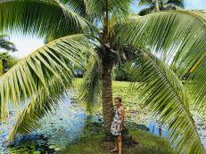 Eden pose sous le cocotier - Jardin d'eau - Tahiti
