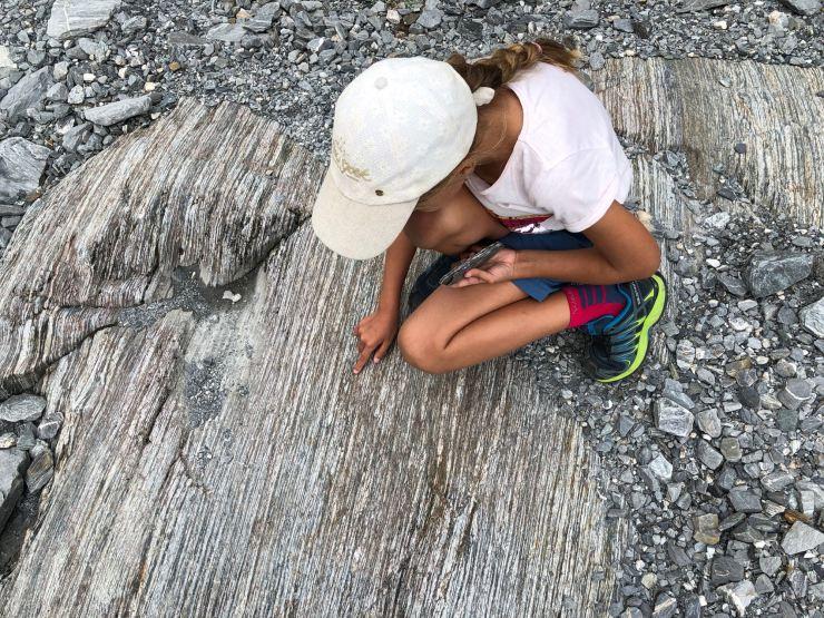 Leçon de géologie lors de la marche au Franz Joseph