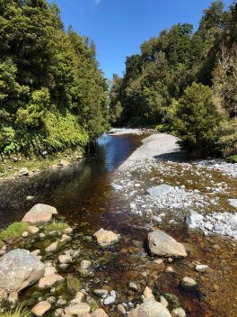 Le long de la Haast Pass Road - Nouvelle-Zélande