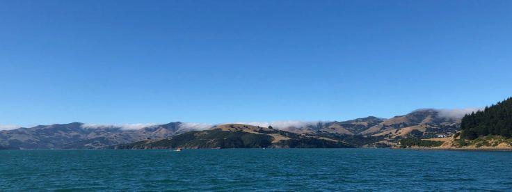 Vue sur la côte depuis la mer - Akaroa - Banks Peninsula - Nouvelle-Zélande