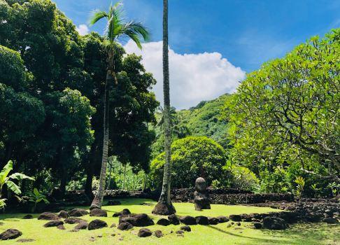 Marae Arahurahu - Tahiti - Polynésie