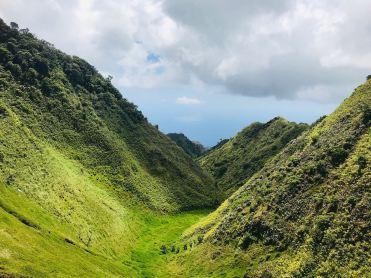 Vallée verdoyante - Nuku Hiva - Iles Marquises - Polynésie