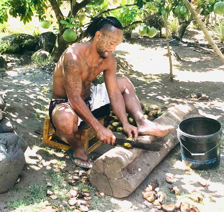 Ouverture des noix - Vallée d'Hakaui - Nuku Hiva - Iles Marquises - Polynésie