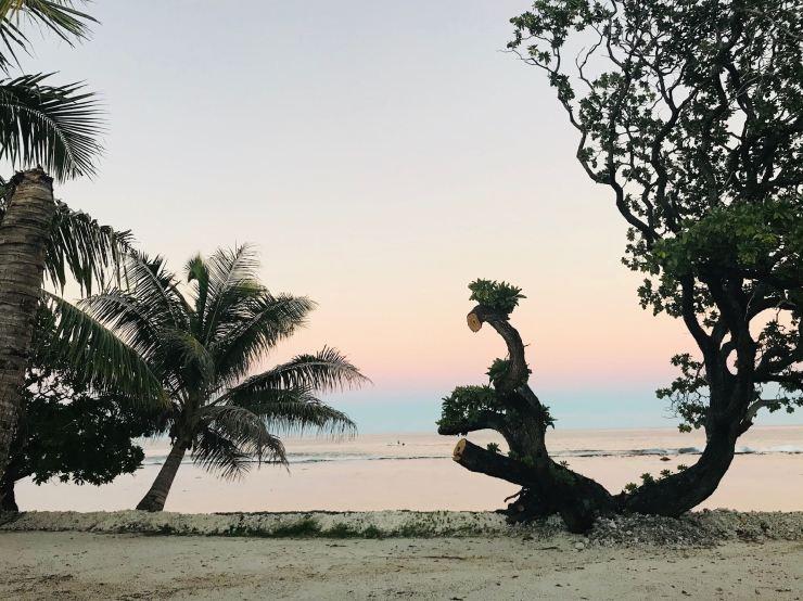 Coucher de soleil au Tifaifai et café - Huahine - Polynésie