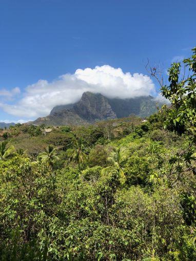 Végétation et sommets - Hiva Oa - Iles Marquises Polynésie