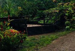 Bac à coprah - Hiva Oa - Iles Marquises - Polynésie
