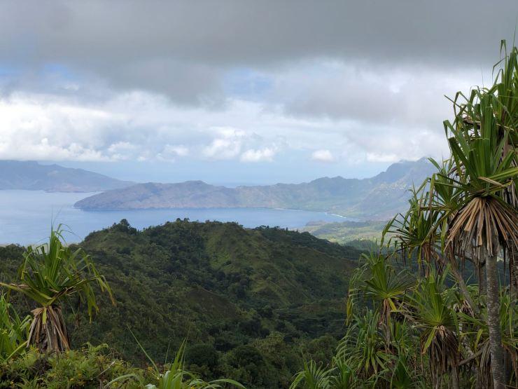 Paysage découpé, végétation et grandes baies - Hiva Oa - Iles Marquises - Polynésie