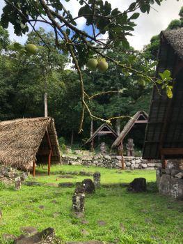 Premiers pas sur le site d'Iipona - Hiva Oa - Iles Marquises - Polynésie