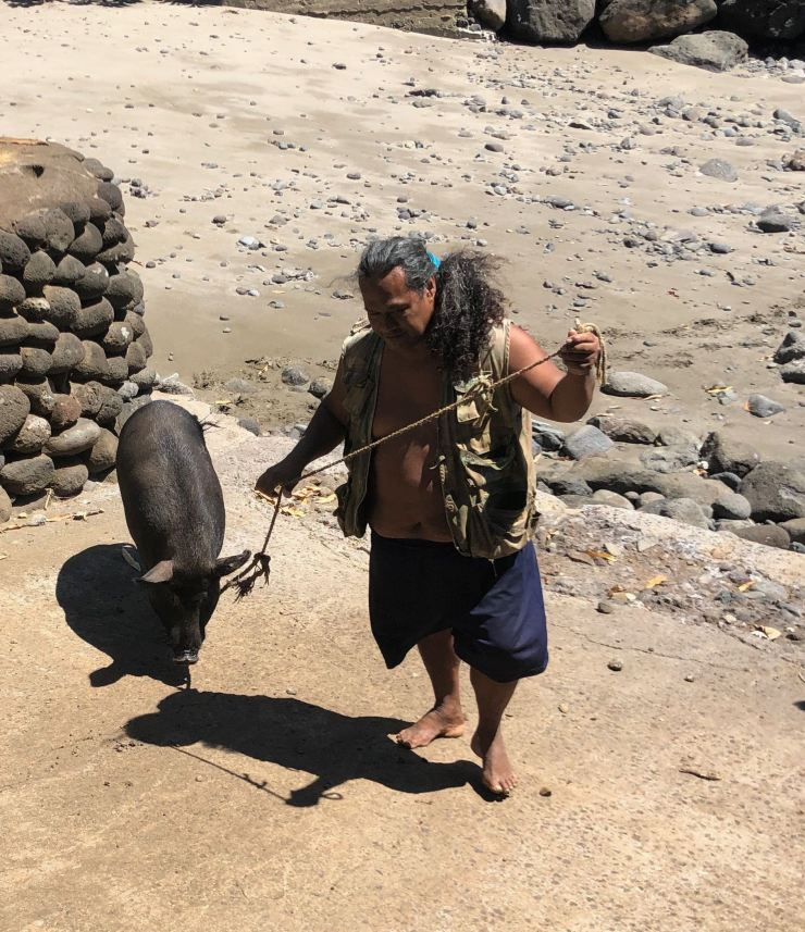 Ici on promène son cochon - Vaitahu - Tahuata - Iles Marquises - Polynésie