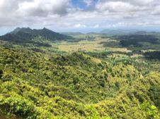 Paysage Marquisien - Sur la route - Nuku Hiva - Iles Marquises - Polynésie