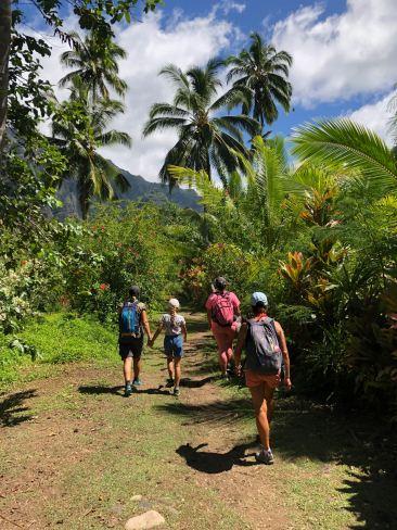 Baie d'Hakaui, nous rentrons dans la vallée par la voie royale - Nuku Hiva - Iles Marquises - Polynésie