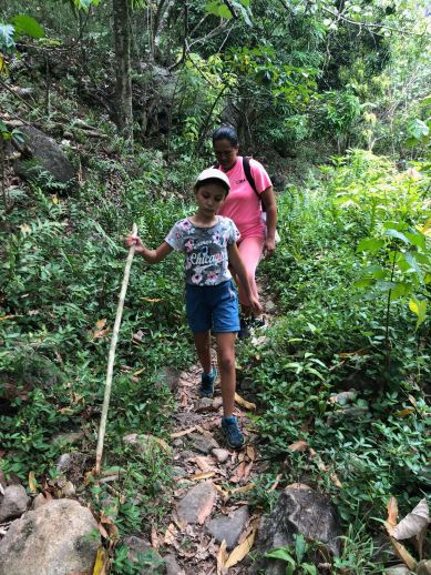 En route vers la cascade de Vaipo - Vallée d'Hakaui - Nuku Hiva - Iles Marquises - Polynésie