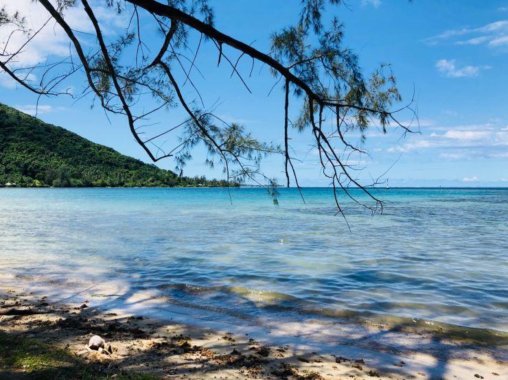 Couleur de l'eau ! - Moorea - Polynésie