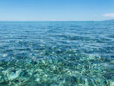 Du bleu, du bleu - Lagoonarium - Moorea - Polynésie