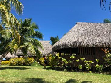 Les bungalows du Fare Miti - Moorea - Polynésie