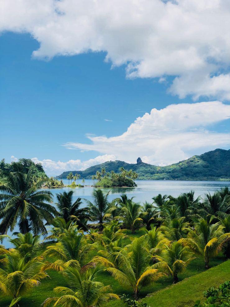 Paysage Polynésien - Huahine - Polynésie