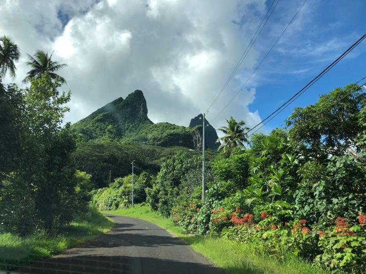 Paysage Polynésien depuis la route qui fait le tour de l'île - Raiatea - Polynésie