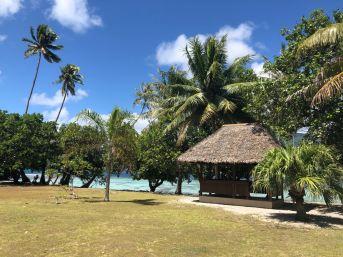 Sur le Motu Ofetaro - Raiatea - Polynésie