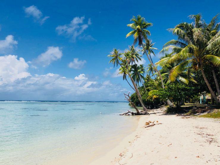 Sur la plage - Motu Ofetaro - Raiatea - Polynésie