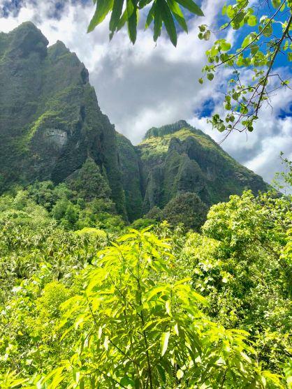 Paysage Marquisien - Vallée d'Hakaoui - Nuku Hiva - Iles Marquises - Polynésie