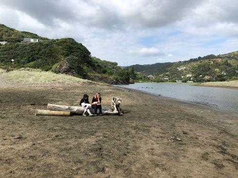 Rêverie - Plage de Piha - Nouvelle-Zélande