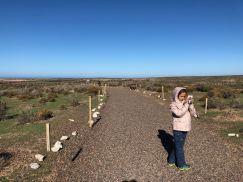 Eden poursuit son reportage - Punta Tombo - Argentine