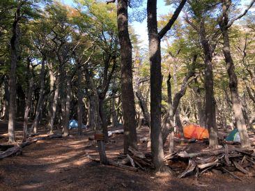 Dans la forêt , un camping ! - treck du Fitz Roy - El Chaltén - Argentine