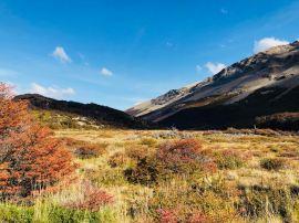 Lande de Patagonie - El Chalten - Argentine