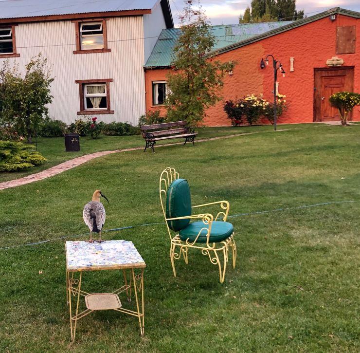 Jardin de notre hôtel - El Calafate - Argentine