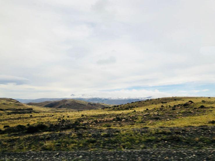 Steppe de Patagonie - Torres del Paine - Patagonie - Chili