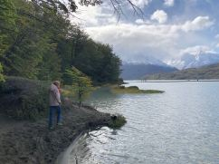 Vers la plage - Lago Grey - Torres del Paine - Patagonie - Chili