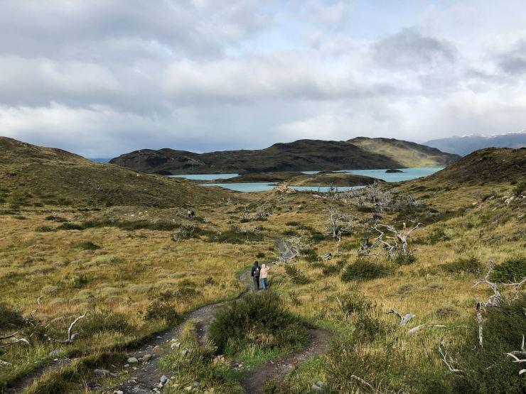Perdues dans la steppe - Torres del Paine - Patagonie - Chili