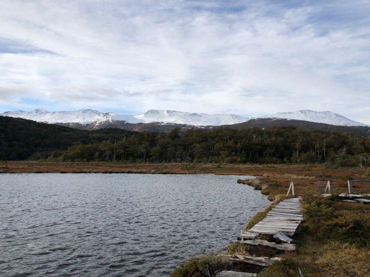 Parc National Tierra de Fuego - Argentine